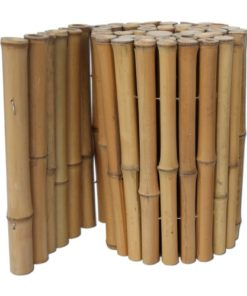 Bambus Kantning