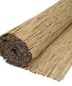 Bambus Reed Hegn