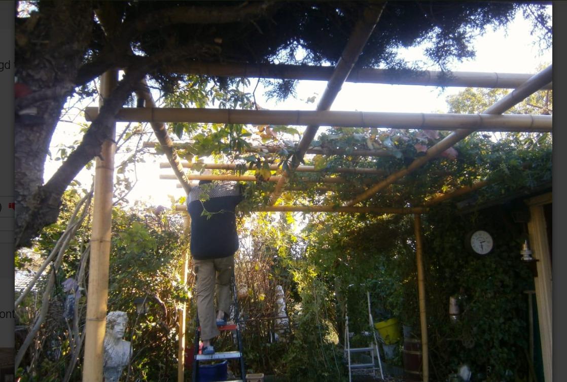 Picture of: Black Bamboo Pavilion Pergola Kit 3 X 3 M Bambus Produkter